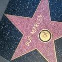 hollywood-star-bob-marley